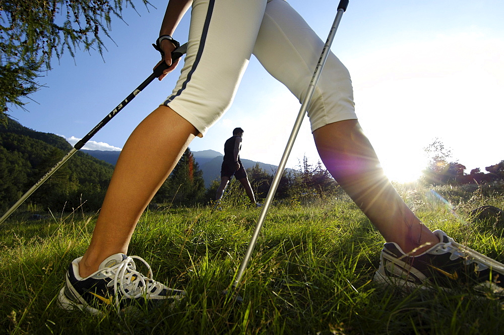 Nordic Walking, a woman's legs on a meadow in the sunlight, Val Venosta, South Tyrol, Italy, Europe