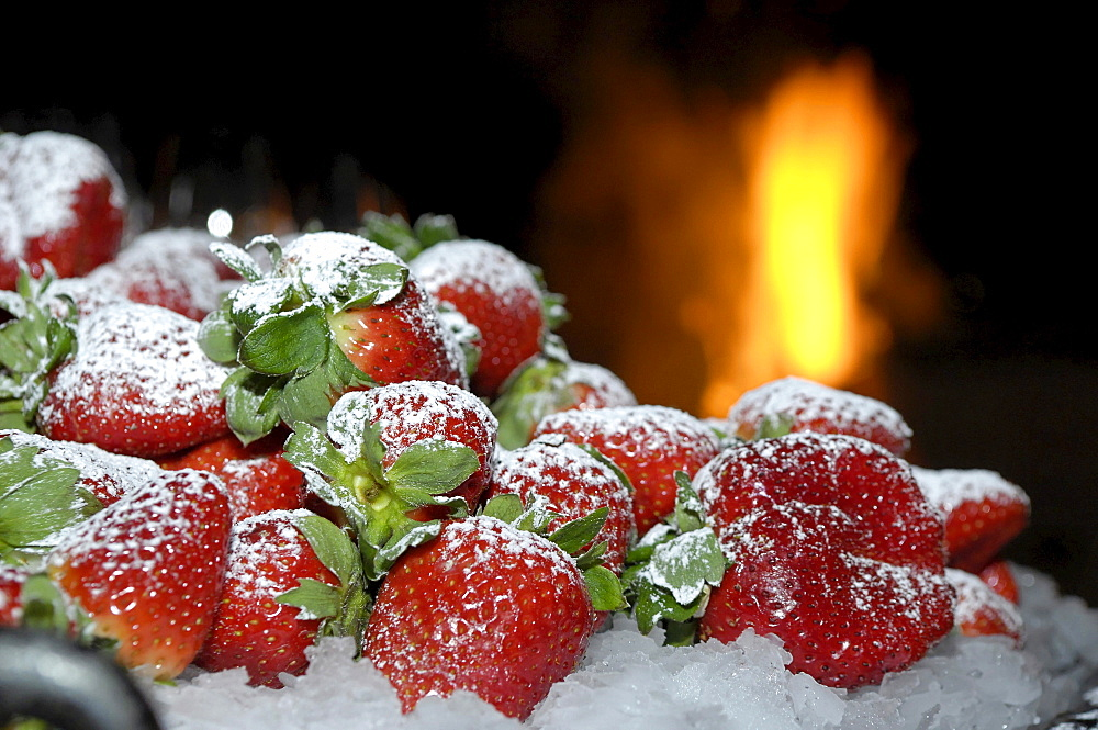 Sugared strawberries on ice, South Tyrol, Italy, Europe
