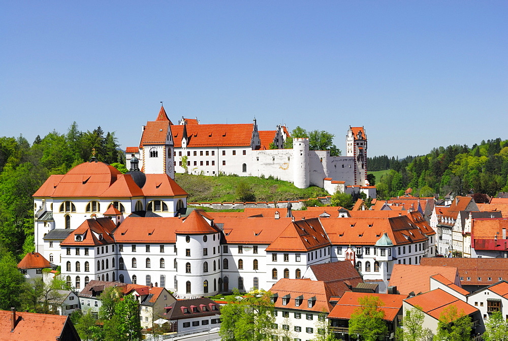 View to Old Town with St. Mang's Abbey, Fuessen, Allgaeu, Swabia, Bavaria, Germany