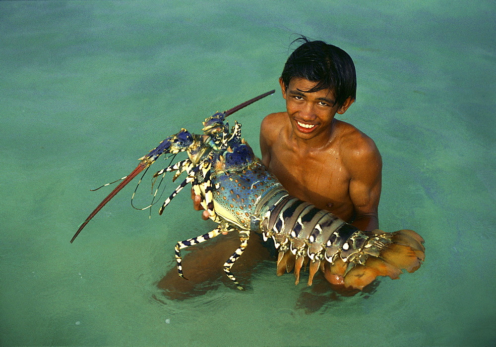 Boy in the water holding giant pacific lobster, Cebu Island, Visayas, Philippines, Asia