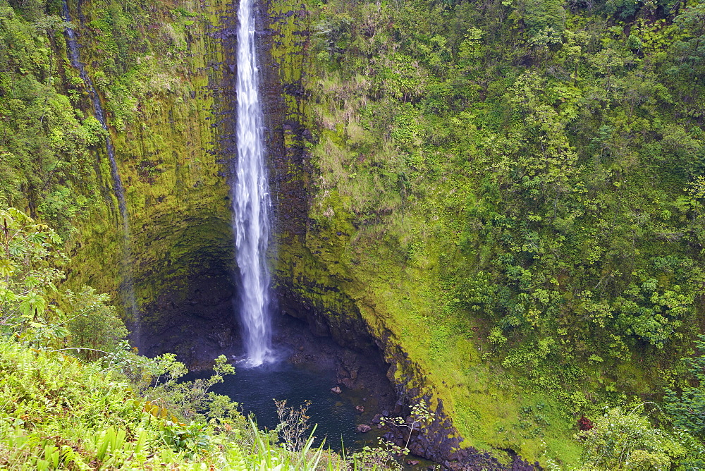 View at waterfall at Akaka Falls State Park, Big Island, Hawaii, USA, America