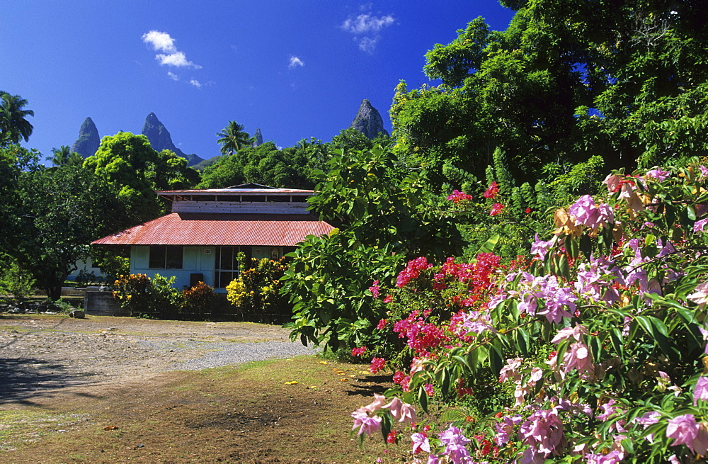 House in the village of Hakahetau surrounded by blooming bushes, island of Ua Pou, French Polynesia