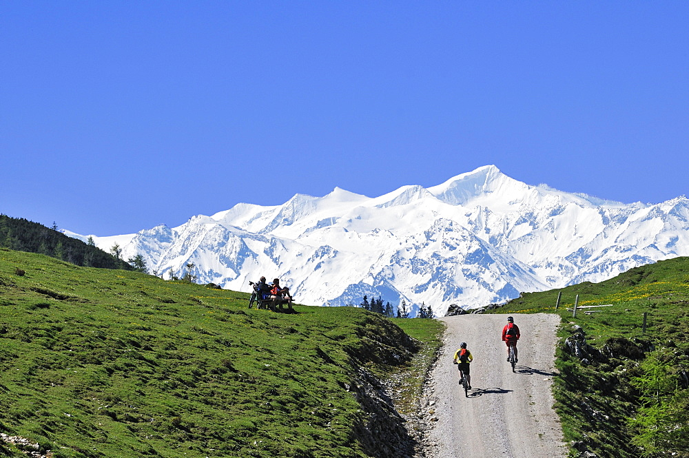 People on mountain bikes at Eggenalmkogel, Hohe Tauern in the background, Reit im Winkl, Bavaria, Germany, Europe