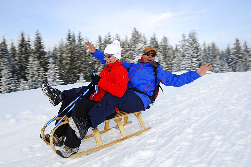 Couple sledging on winter hiking trail in snowy landscape, Hemmersuppenalm, Reit im Winkl, Chiemgau, Bavaria, Germany, Europe