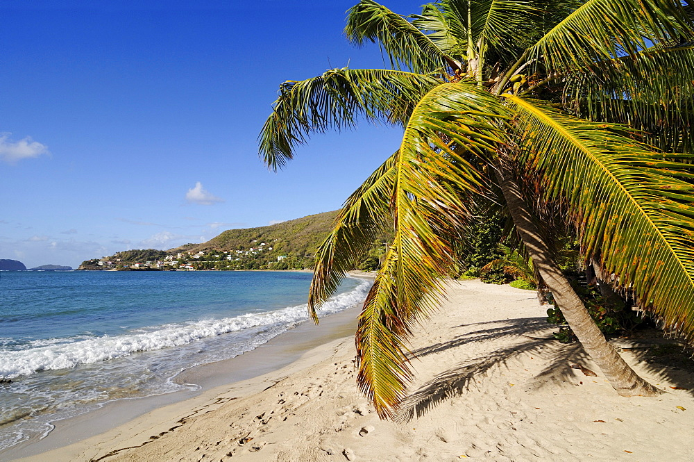 Friendship Bay, Bequia, Saint Vincent, Caribbean