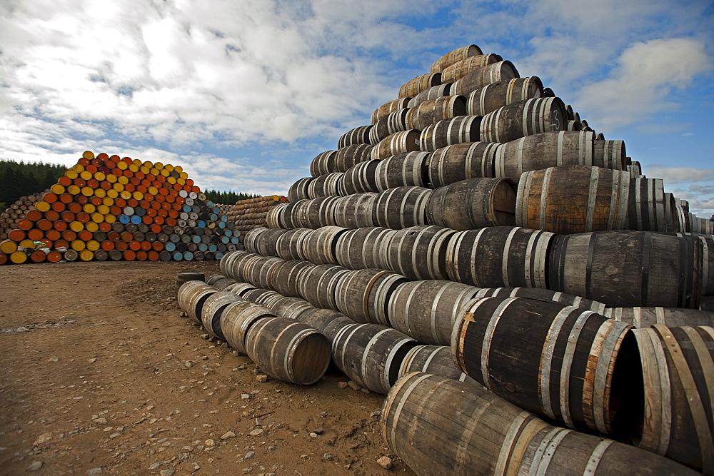 Empty oak barrels at Speyside Cooperage, Craigellachie, Aberdeenshire, Scotland