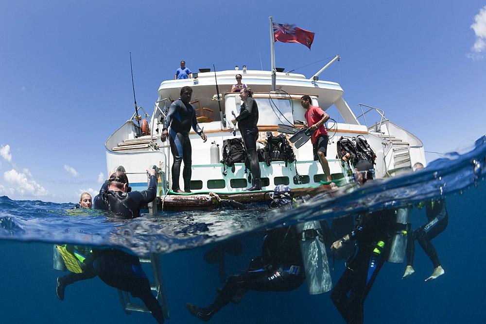 Diver ascending at Liveaboard Fiji Island Dancer, Wakaya, Lomaiviti, Fiji