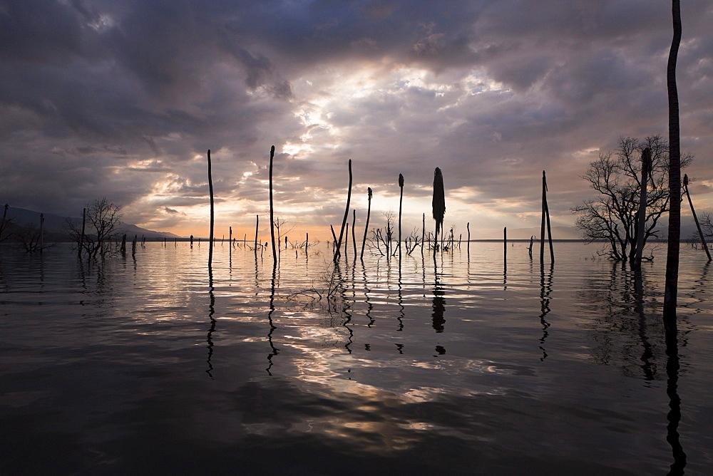 Impressions of Saltlake Lago Enriquillo, Isla Cabritos National Park, Dominican Republic