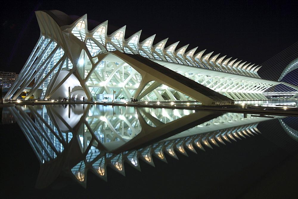 Museo de las Ciencias PrÃŒncÃŒpe Felipe, Architect Santiago Calatrava, Valencia, Spain