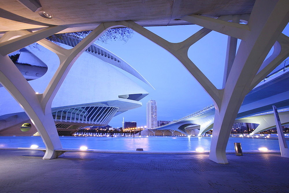 Palau de les Arts Reina SofÃŒa, Architect Santiago Calatrava, Valencia, Spain