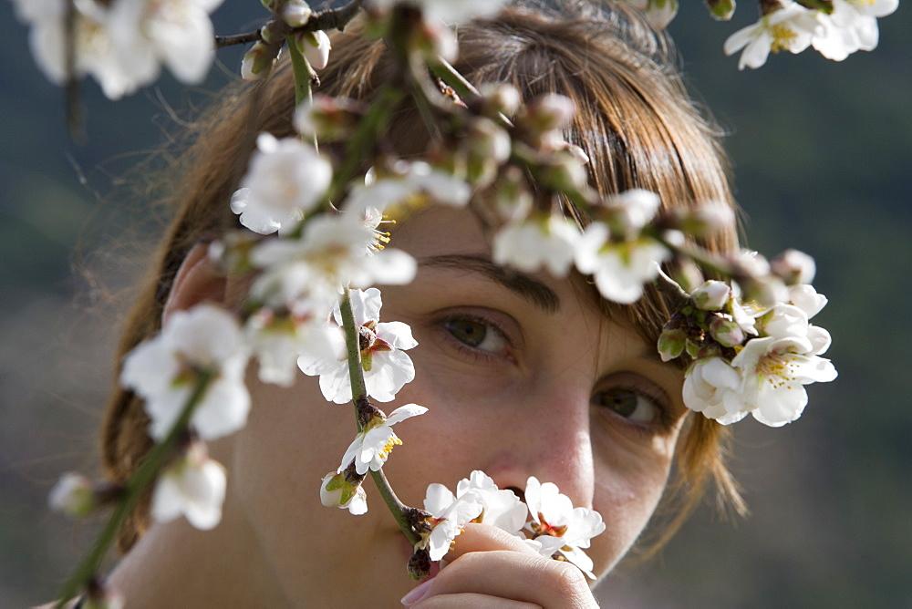 Woman Admiring Almond Tree Blossoms, Near Randa, Mallorca, Balearic Islands, Spain