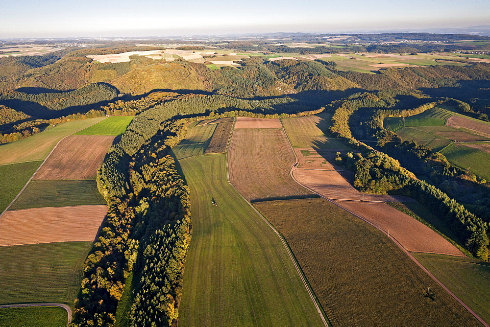 Aerial view of fields and acres in the evening light, Eifel, Rhineland Palatinate, Germany, Europe