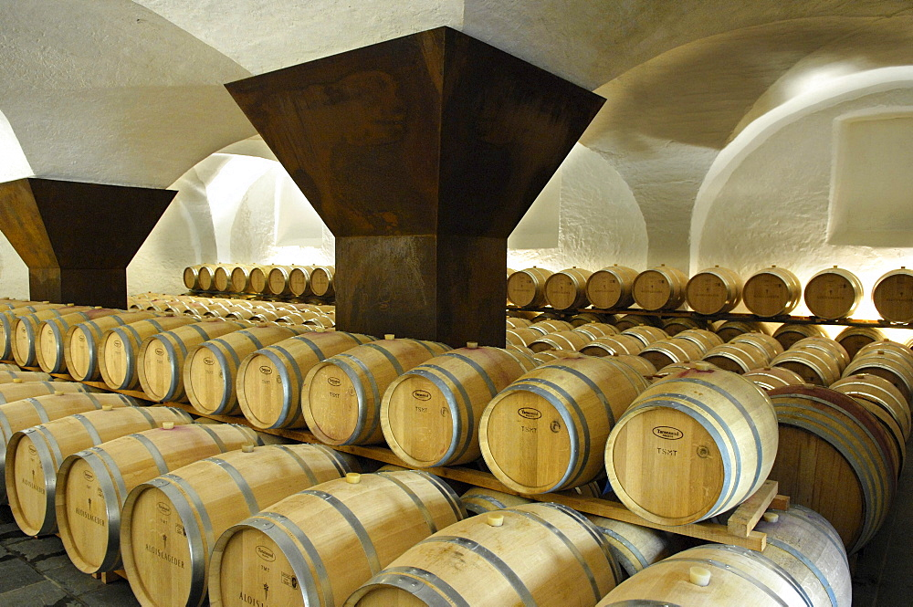 Barrels at a winery, Ansitz Loewengang, Margreid an der Weinstrasse, South Tyrol, Italy, Europe