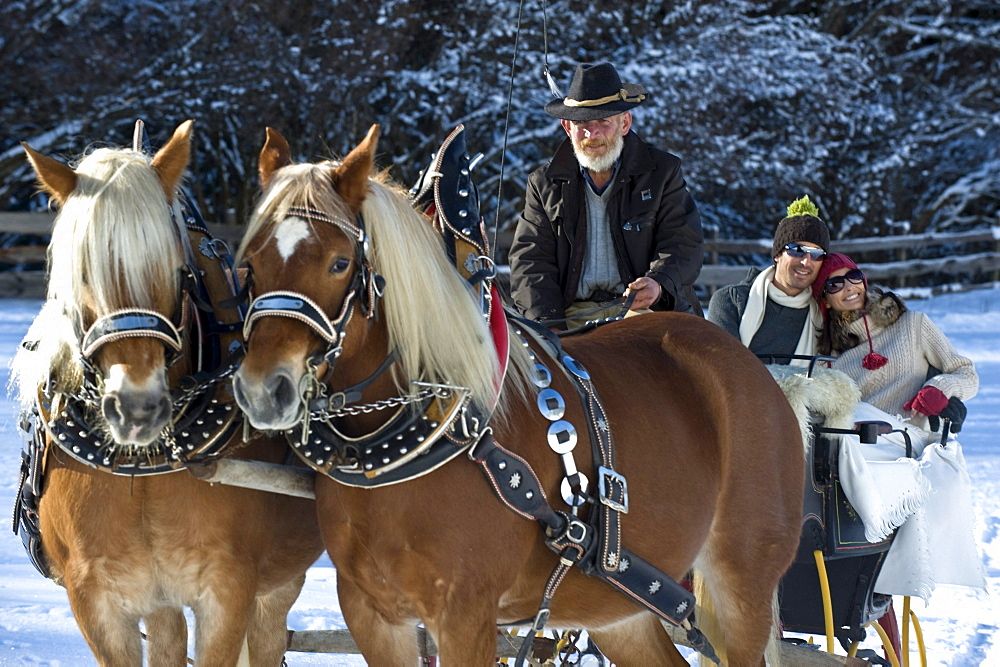People in a horse drawn slay in snowy landscape, Alto Adige, South Tyrol, Italy, Europe