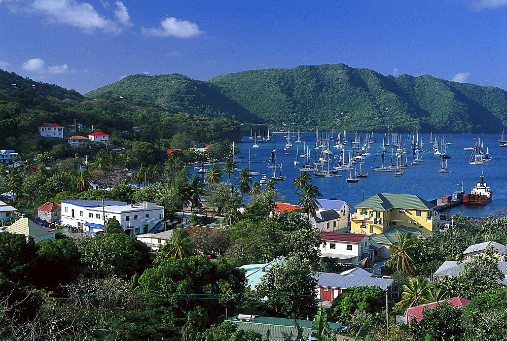 View over houses at sailing boats in a bay under blue sky, Admiralty Bay, Port Elizabeth, Bequia, St. Vincent, Grenadines, Caribbean, America