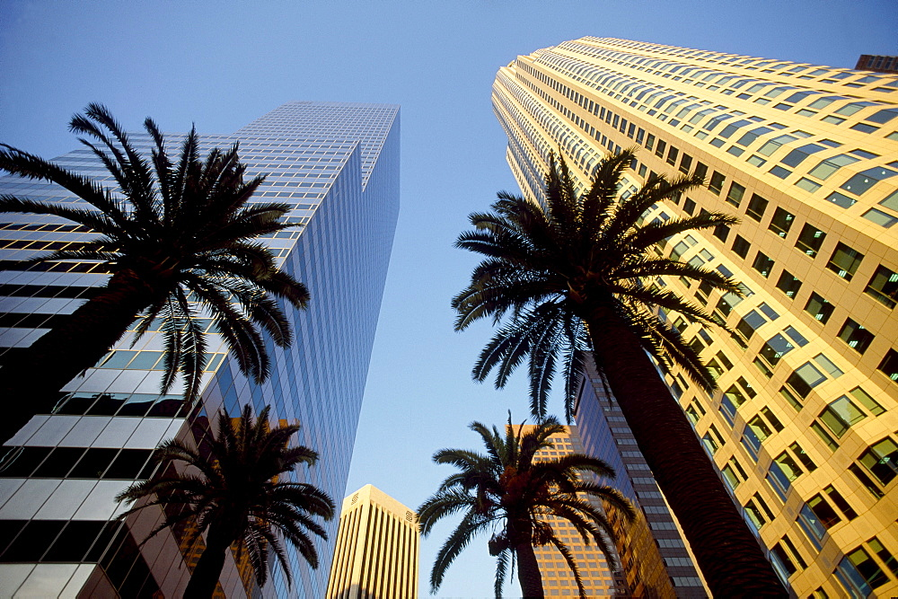 First Interstate World Center, on the right, Los Angeles, California, USA