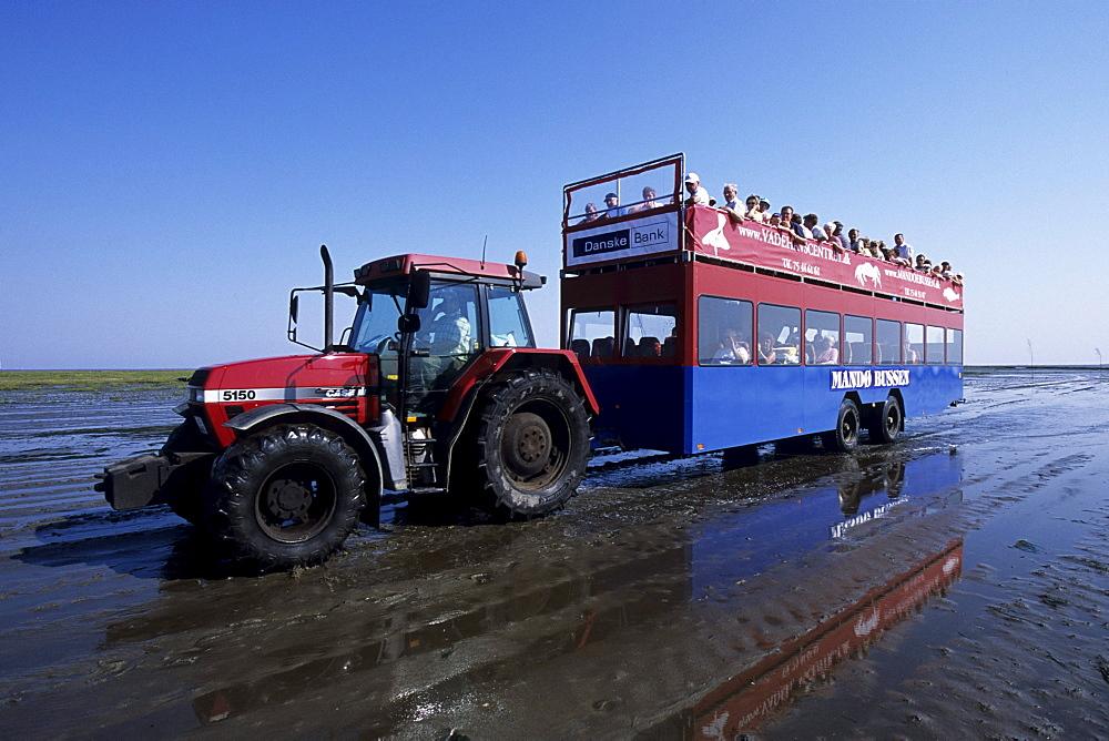 Mandobussen tourist bus crossing the wadden sea at Mando Dam, Near Mando, Denmark