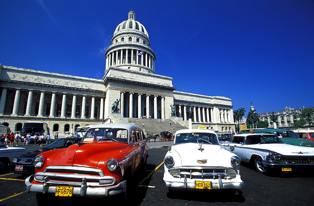 Old taxies in front of Capitolio Nacional at the old town, Havana, Cuba, Caribbean, America - 1113-53291