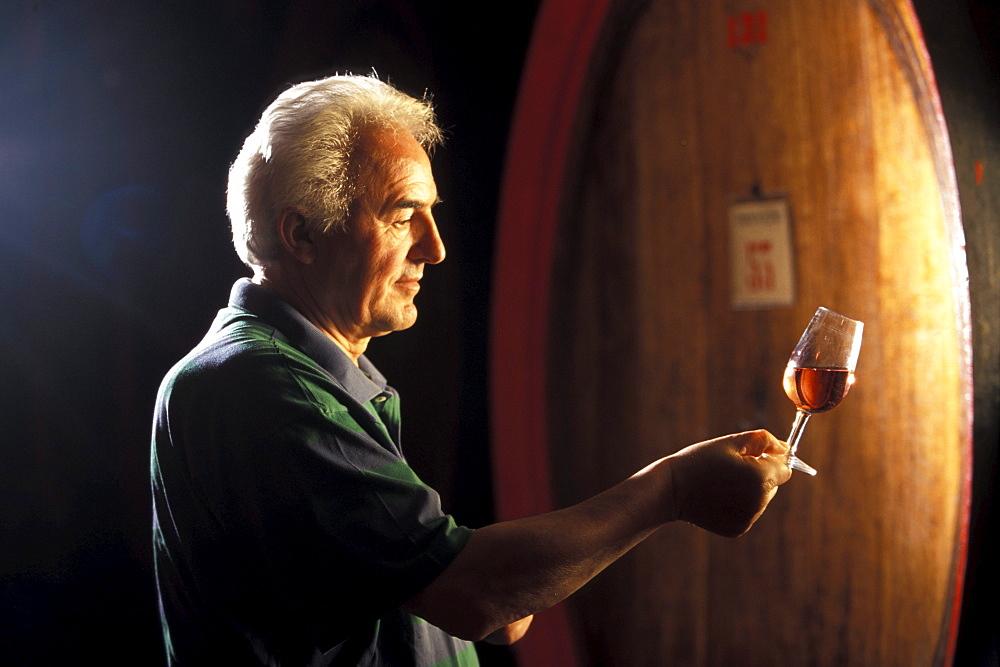 Signore Zeni tests Bardolino Wine, sea Garda, Trentino, Italy