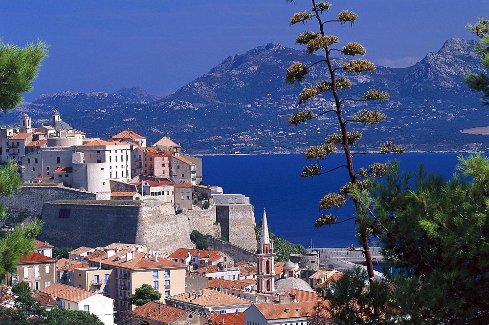 Citadel, Calvi Corsica, France