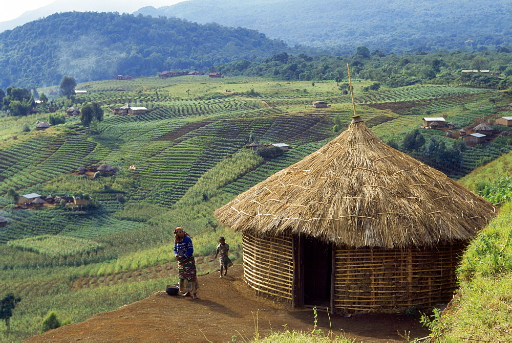 Cabin, view over fields, african village Djombe, Virunga Mountains, Zaire, Africa