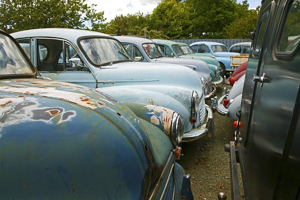 Old cars, Morris car yard, Nelson, South Island