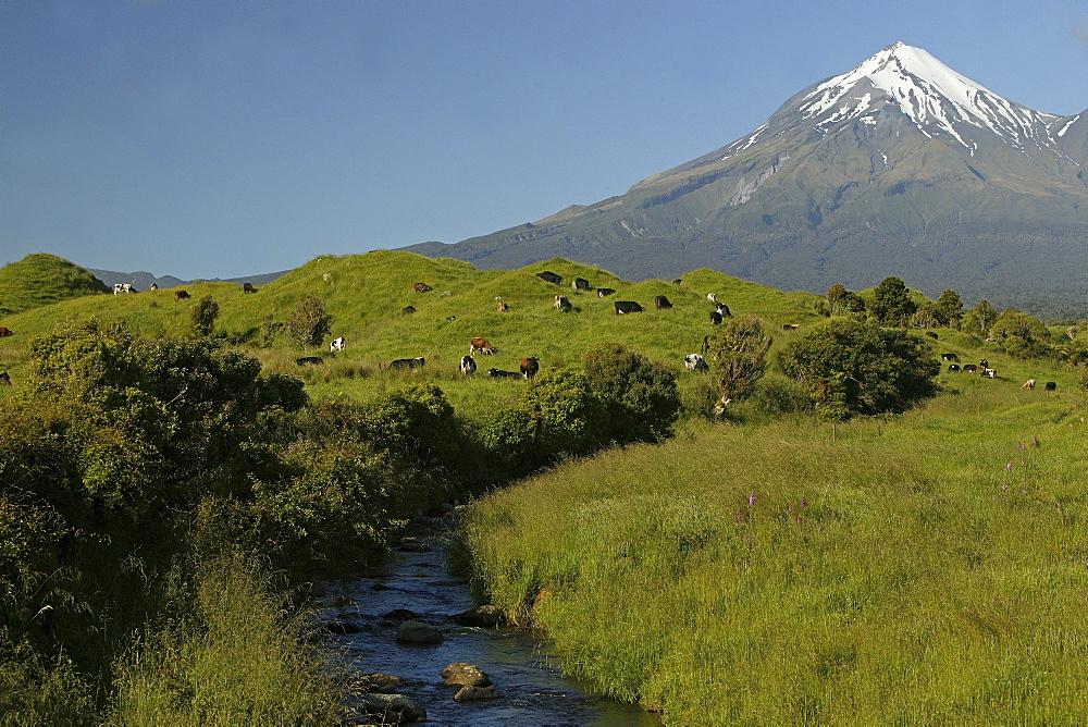 View of dormant volcano Mount Taranaki at Egmont National Park, North Island, New Zealand, Oceania