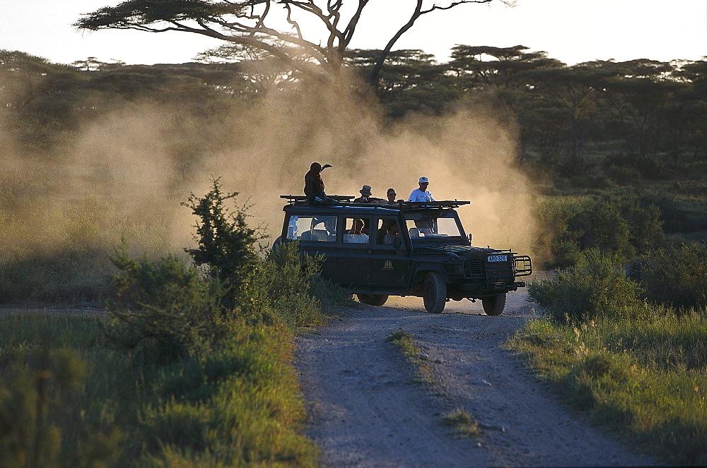 Jeep Safari, Serengeti National Park, Tanzania - 1113-60657