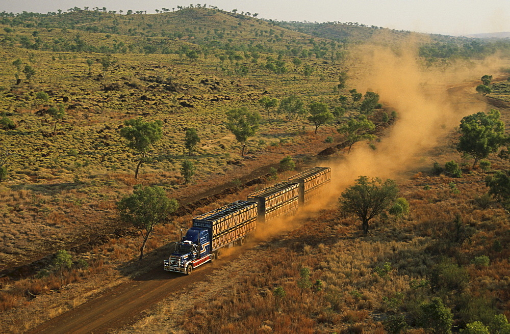 aerial view of cattle truck on dirt road, Kimberley, Western Australia, Australia