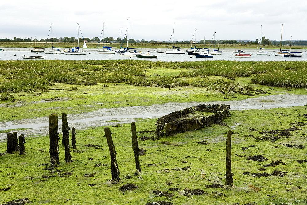Abandoned boat wreck near Bosham, West Sussex, England, Europe