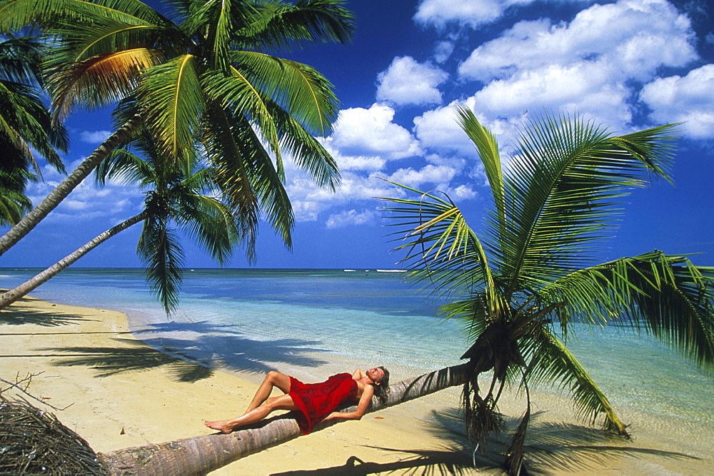 Lying woman, Palm beach, coconut palms, Dominican Republic, America