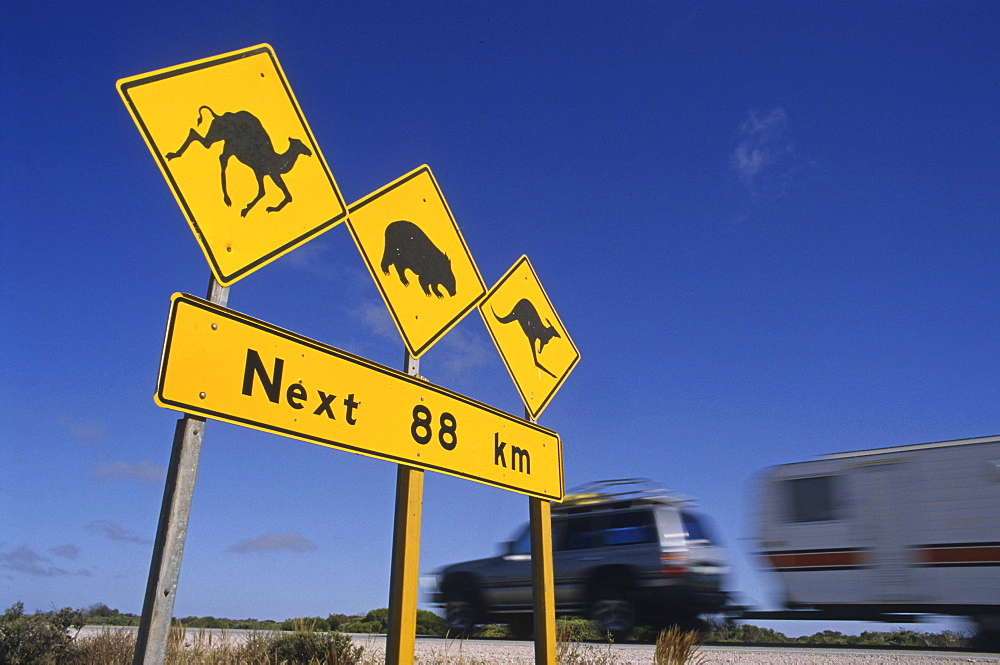 Outback highway sign warning camels, wombats and kangaroos might be on the road, Queensland, Australia