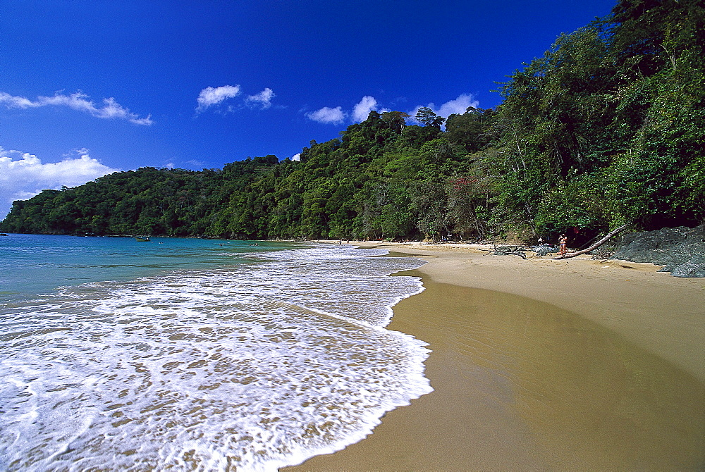Sandy beach, Pirate¥s Bay, near Charlotteville, Tobago, West Indies, Caribbean