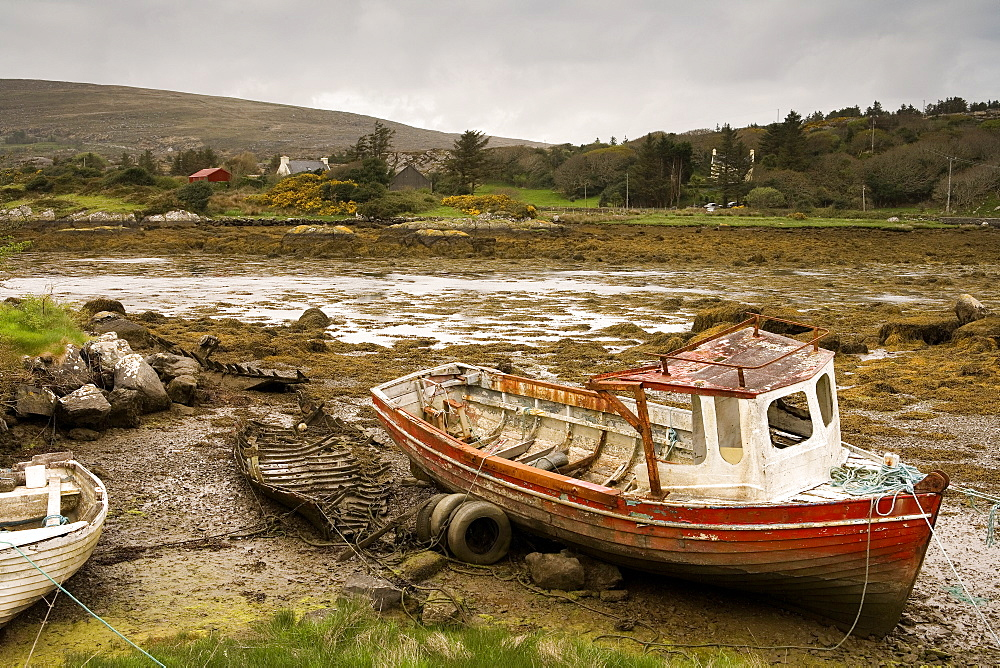 Low tide revealing derelict, rotten, fishing boat, Coulagh Bay, County Kerry, Ireland, Europe