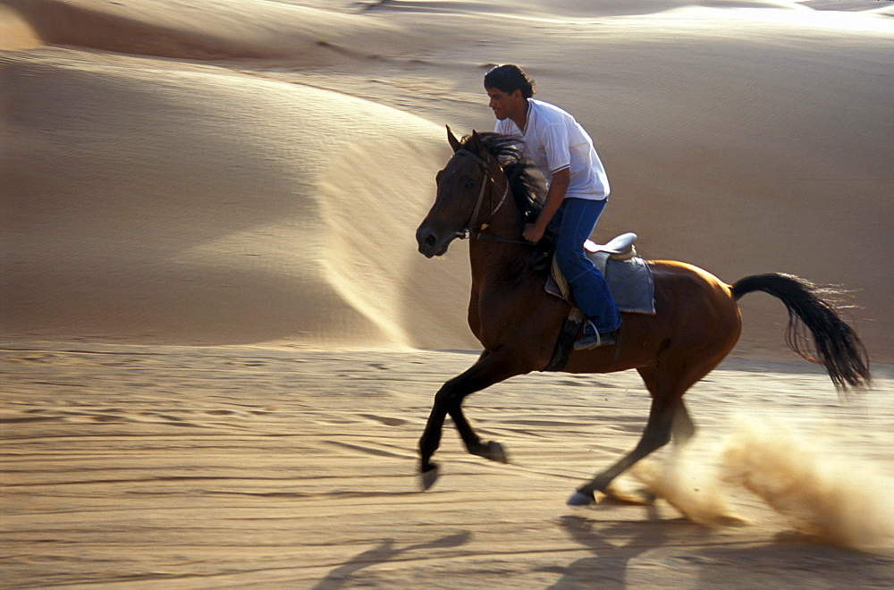 Young man riding a horse at the desert, Sultanat Oman, Middle East, Asia