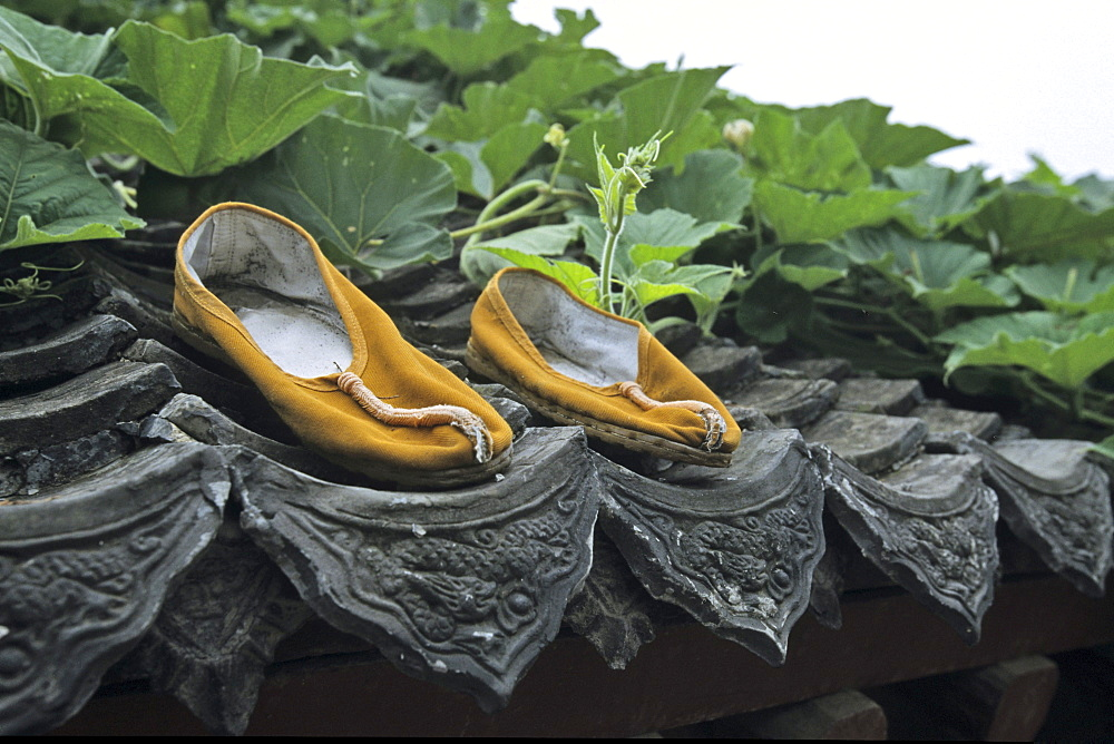 Shoes from a Shaolin monk drying on the roof of Shaolin Monastery, known for Shaolin boxing, Taoist Buddhist mountain, Song Shan, Henan province, China