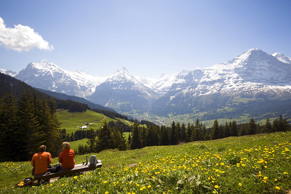 Hikers resting at Bussalp (1800 m), view to Eiger North Face (3970 m), Grindelwald, Bernese Oberland (highlands), Canton of Bern, Switzerland