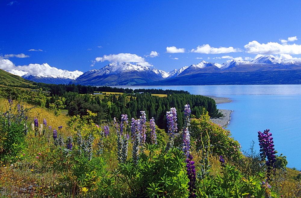Lake Pukaki and Mount Cook Nationalpark, South Island, New Zealand