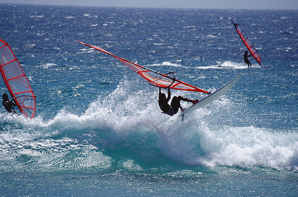 People windsurfing at Costa de la Luz, Provinz Cadiz, Andalusia, Spain