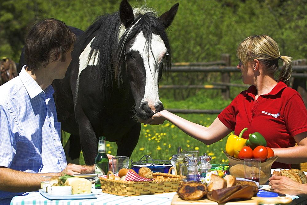 Paar mit Pferd beim Mittagstisch im Freien