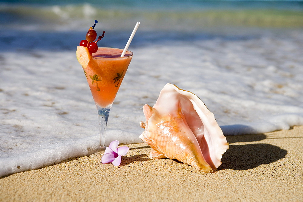 Cocktail and Conch Shell on a sandy beach, Near Maca Bana Villas, Point Salines, Grenada, Lesser Antilles, Carribean