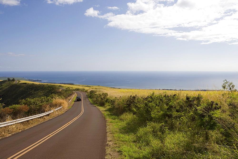 Road through Sugarcane Fields, Waimea Canyon Drive, near Waimea, Kauai, Hawaii, USA