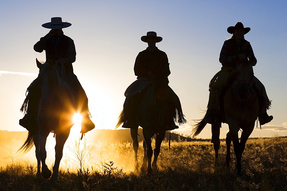 cowboys riding at sunset, Oregon, USA