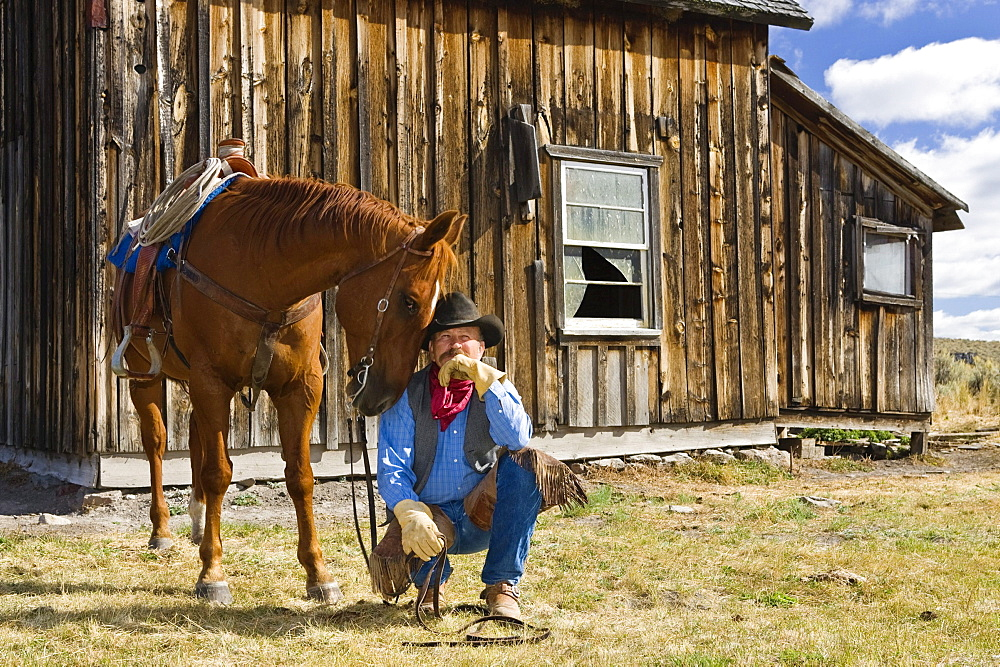 cowboy with horse at barn, wildwest, Oregon, USA