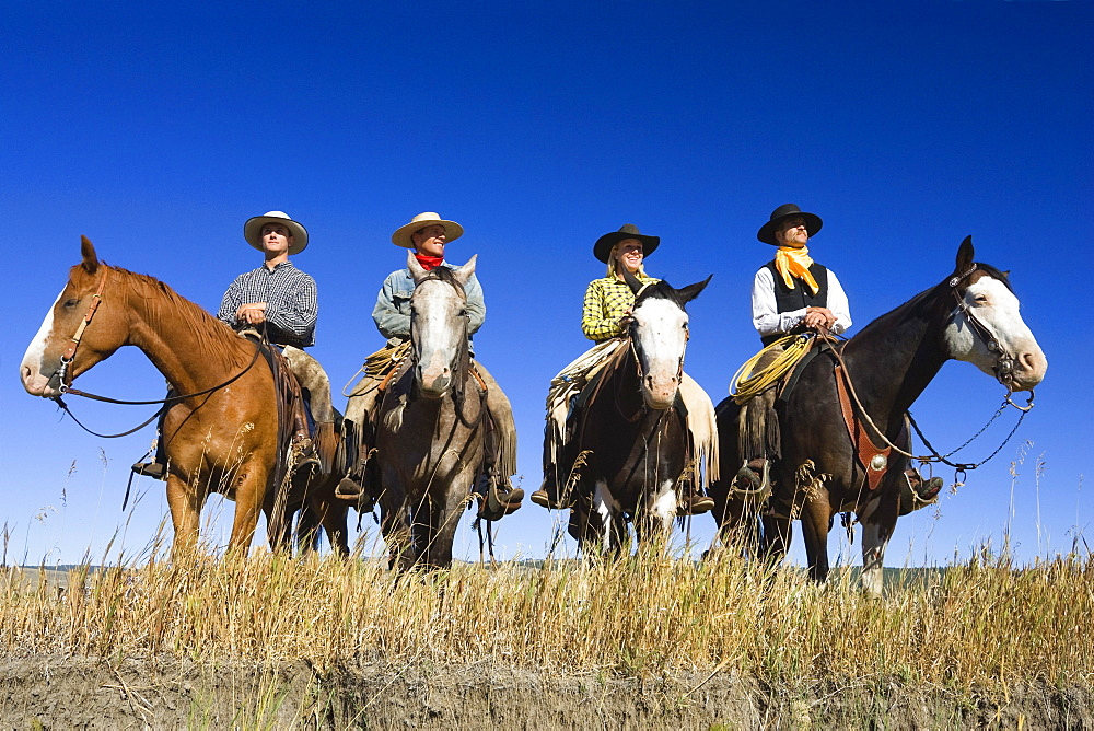Cowboys sitting on horses, wildwest, Oregon, USA