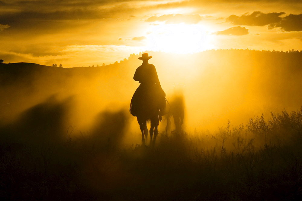 cowboy horseriding at sunset, Oregon, USA