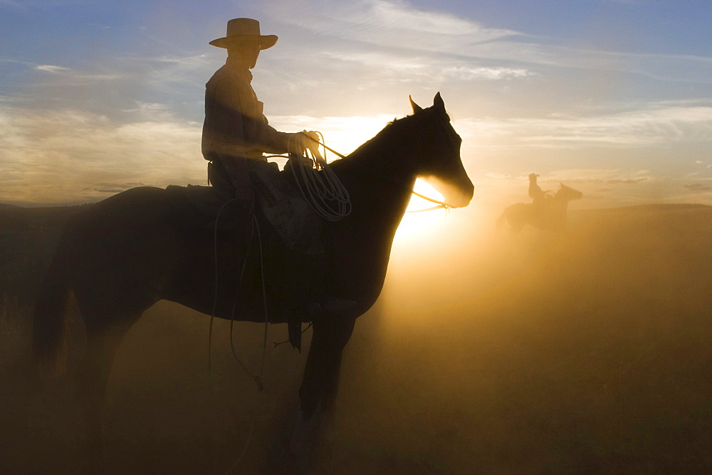 Cowboy riding at sunset, Oregon, USA