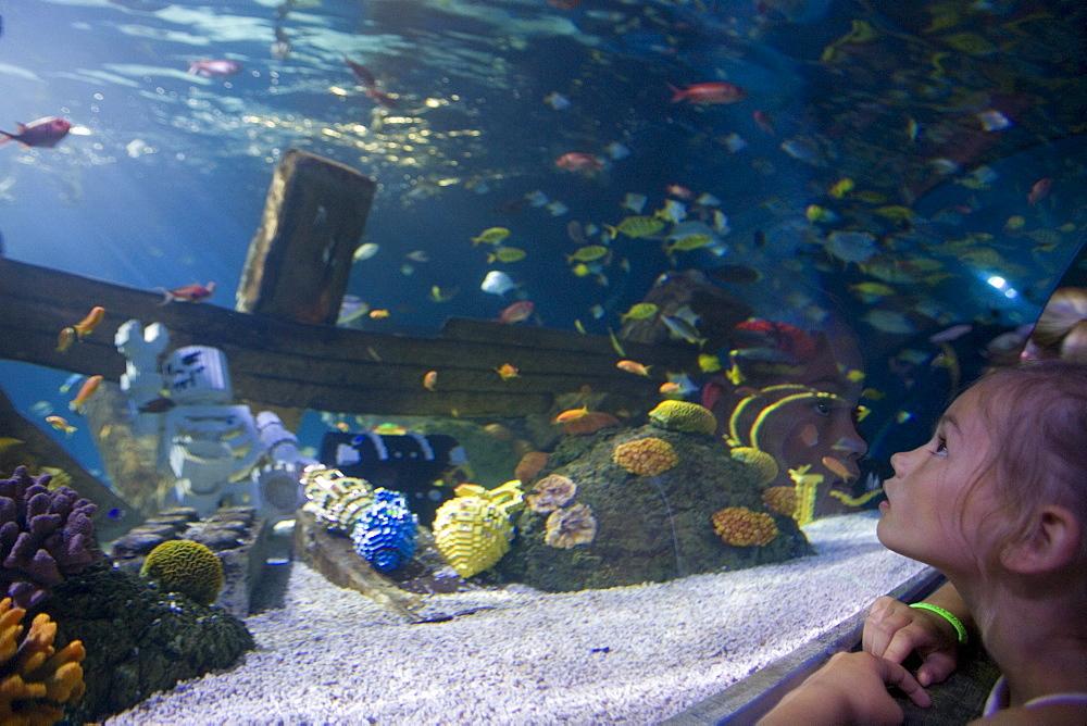 Girl admiring fishes in Atlantis Aquarium Attraction, Legoland, Billund, Central Jutland, Denmark