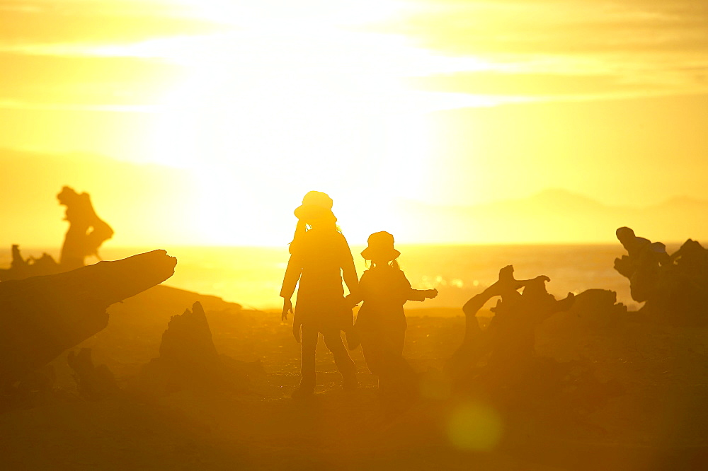Children walking in between beach logs, beach near Haast, Westcoast, South Island, New Zealand
