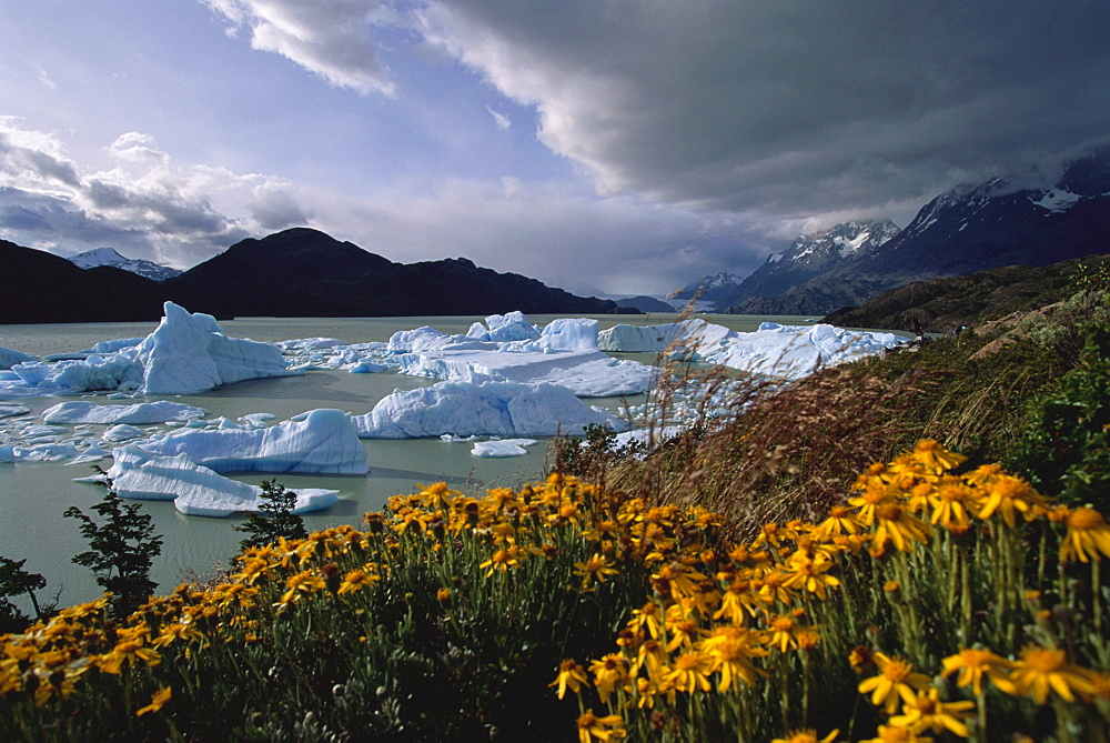 Lago del Grey, Torres del Paine National Park, Patagonia, Chile